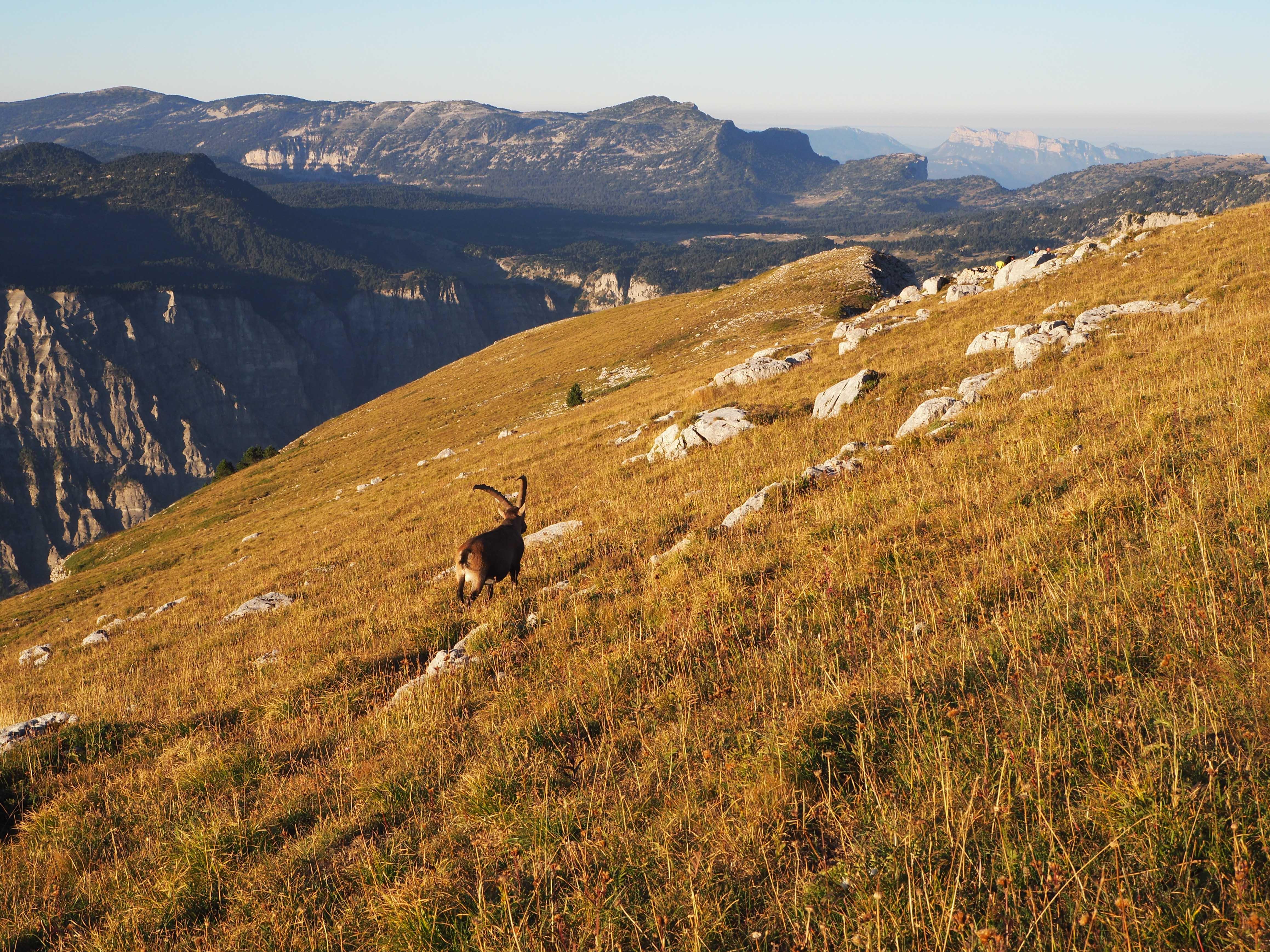 Mt Aiguille 3